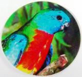 Neoféma modrohlavá MINI logo