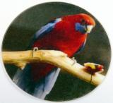 Rosela penant MINI logo