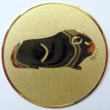Morče MAXI emblém A2č.49