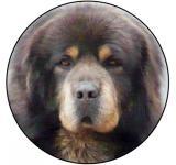 Tibetská doga MAXI logo L2č.137