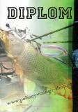 Rybáři diplom A4 č.71