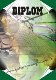 Rybáři diplom A4 č.74