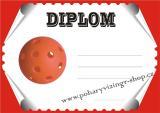 Florbal diplom A4 č.11