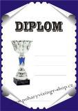 Diplom A4 D č.44