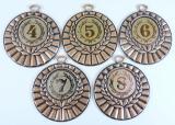 Medaile D28B-169-73