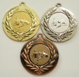 Kulečník medaile D6A-A12
