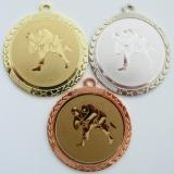 Judo medaile D113-77