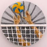 Volejbal keramika FG007