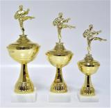 Karate poháry X22-F10