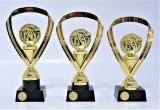Šipky trofeje 95-P017