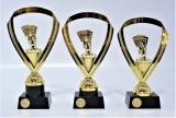 Karty trofeje 95-P018