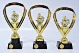 Hasiči trofeje 95-P033