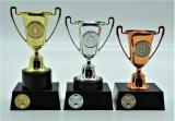 Kulečník poháry 376-55