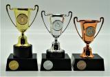 Ragby poháry 376-82