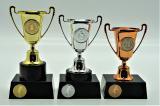 Šerm poháry 376-136
