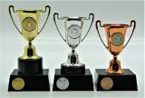 Florbal poháry 376-165
