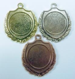 Medaile D12A - zvětšit obrázek