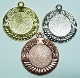 Medaile D12B - zvětšit obrázek