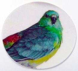Papoušek zpěvavý MINI logo - zvětšit obrázek
