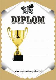 Bench press diplom A4 č.3 - zvětšit obrázek