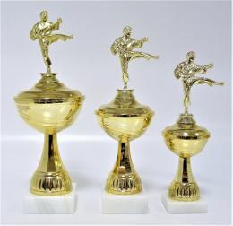 Karate poháry X22-F10 - zvětšit obrázek