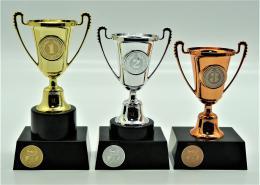 Triatlon poháry 376-74 - zvětšit obrázek