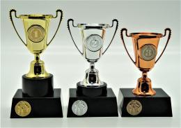 Volejbal poháry 376-A2 - zvětšit obrázek