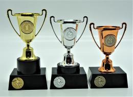 Sjezd poháry 376-A54 - zvětšit obrázek