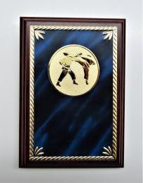 Karate plaketa H122-G181-78 - zvětšit obrázek