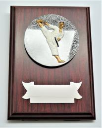 Karate plaketa H122-G15-FG005 - zvětšit obrázek