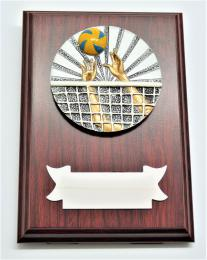 Volejbal plaketa H122-G15-FG007 - zvětšit obrázek