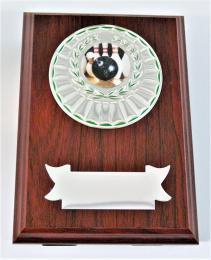 Bowling plaketa H122-G15-G351-L150 - zvětšit obrázek