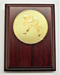 Judo plaketa H120-77 - zvětšit obrázek