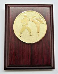 Karate plaketa H120-78 - zvětšit obrázek