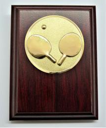 Stolní tenis plaketa H120-A22 - zvětšit obrázek