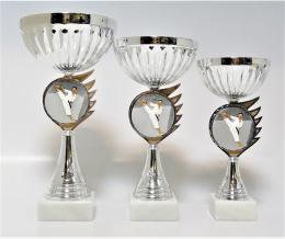 Karate poháry K17-FG005 - zvětšit obrázek