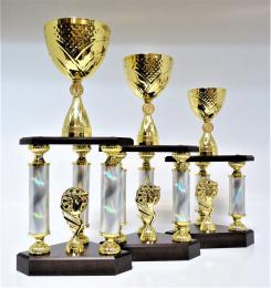 Šipky trofeje X47-P412 - zvětšit obrázek