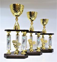 Stolní tenis trofeje X47-P416 - zvětšit obrázek